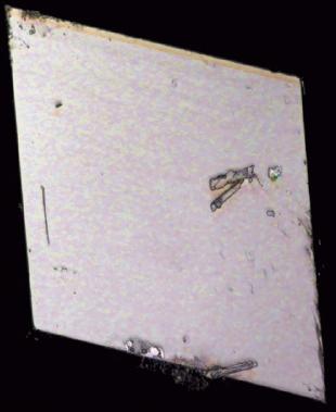 有機超伝導体の単結晶(一辺が約2㎜)