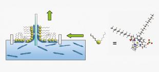 発光性の金属錯体薄膜の製造方法