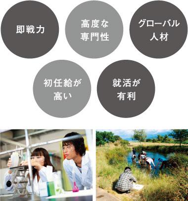 日本における進学のメリット